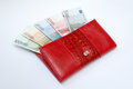 Banknotes in purse euro are Stock Photography