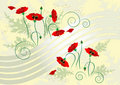 Banner with flover poppy.  Banner. Royalty Free Stock Photography