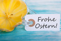 Banner with frohe ostern the german words which means happy easter Stock Image