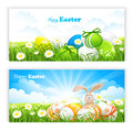 Banner green grass easter eggs white background Royalty Free Stock Photo