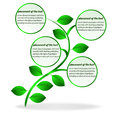 Banner plant for text this is file of eps format Stock Photography