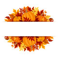 Banner with pumpkins and colorful autumn leaves. Vector eps-10. Royalty Free Stock Photo