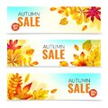 Banners with fall leaves. Autumn season discount offers with red and orange realistic foliage. Colorful leaf design