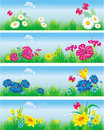 Banners with flowers in meadow. Royalty Free Stock Image