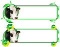 Banners with Head of Cow Leafs and Flowers Royalty Free Stock Photo