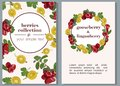 Banners with ripe berries of gooseberries and lingonberries. Vector illustration.