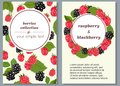 Banners with ripe fruits of raspberries and blueberries. Vector illustration.