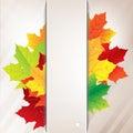 Bannière de papier d autumn composition from leaves and Image stock