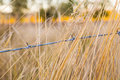Barb Wire Country Fence Royalty Free Stock Photo