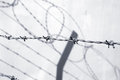 Barb wire fence protection Royalty Free Stock Image