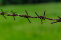 Barb wire in my farm Stock Photo