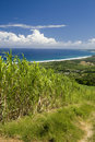 Barbados coastal scene Στοκ Φωτογραφίες