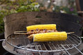 Barbecue with corn and satay Stock Images