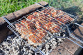 Barbecue with delicious grilled meat on grill Royalty Free Stock Images
