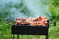 Barbecue in the forest shashlik at nature process of cooking meat on barbecue closeup barbecue with meat in metal grate closed up Stock Image
