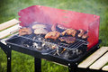 Barbecue in the garden Stock Images