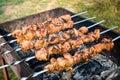 Barbecue met heerlijk geroosterd vlees bij de grill barbecueweekend selectieve nadruk Royalty-vrije Stock Afbeelding