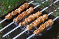 Barbecue skewers with meat on the brazier. Chicken shish kebab Royalty Free Stock Photo