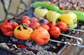 Barbecue vegetables and meat. Royalty Free Stock Photo