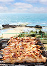 Barbecues on the sea Royalty Free Stock Images