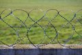 Barbed razor wire on green Stock Images