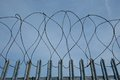 Barbed razor wire on metal security fence a palisade perimeter at a wood yard Stock Image
