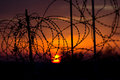 Barbed wire against sunset sky. Royalty Free Stock Photo