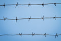 Barbed wire on a background of blue sky Stock Photography