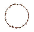 Barbed wire circle Royalty Free Stock Photo