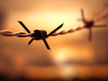 Barbed wire dof with depth of field with the sunset in the background Stock Photo