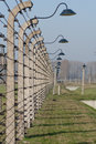 Barbed Wire Fence - Auschwitz Birkenau Royalty Free Stock Photo