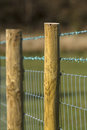 Barbed wire fence a close up image of a row of wooden posts with strands and stock proof mesh fencing below with a field and Royalty Free Stock Images