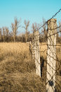 Barbed wire fence in a field Royalty Free Stock Photo