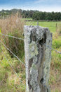 Barbed wire fence post with lichen in country field Royalty Free Stock Photos