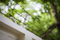 Barbed wire fence security and protection concept Royalty Free Stock Image