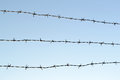 Barbed wire fence with sky symbol of control Royalty Free Stock Photo