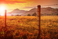 Barbed wire fence and and sunset sky over farm field Royalty Free Stock Photo