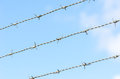 Barbed wire fence with three lines Royalty Free Stock Image