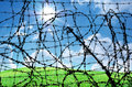 Barbed wire and freedom Stock Photo