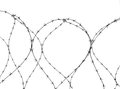 Barbed wire isolated on white Royalty Free Stock Photo