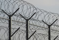 Barbed wire near the prison Royalty Free Stock Photos