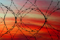 Barbed wire with red sunset in background Royalty Free Stock Image
