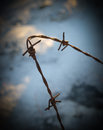 Barbed wire rusty on blurred blue background Stock Photo
