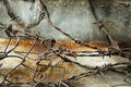 Barbed wire rusty metal wall background Royalty Free Stock Photo