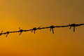 Barbed wire sunset Royalty Free Stock Photo