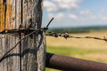 Barbed wire on a wooden fence in the field Royalty Free Stock Photo