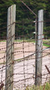 Barbed wires symbol of imprisonment and denial of civil rights Stock Image