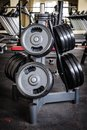 Barbell plates rack gym interior with holder Stock Photos