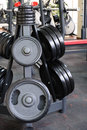 Barbell plates rack holder in the gym Royalty Free Stock Images