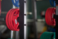 Barbells gym equipment colored Stock Photo